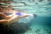 mc diving